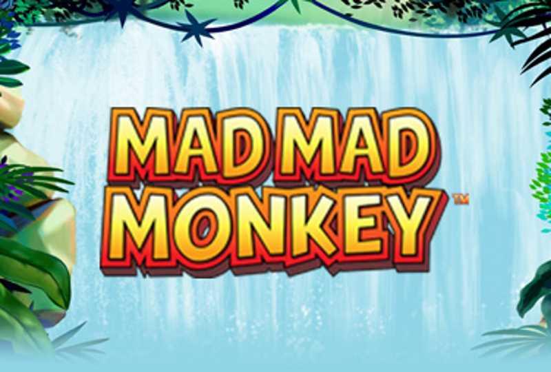 Mad Mad Monkey Slot Banner